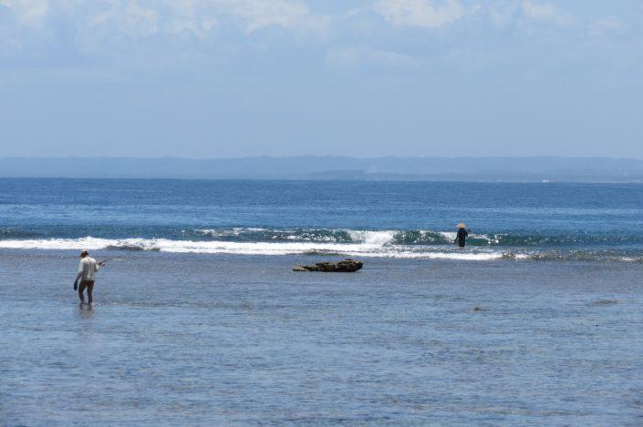 mar sea pangandaran