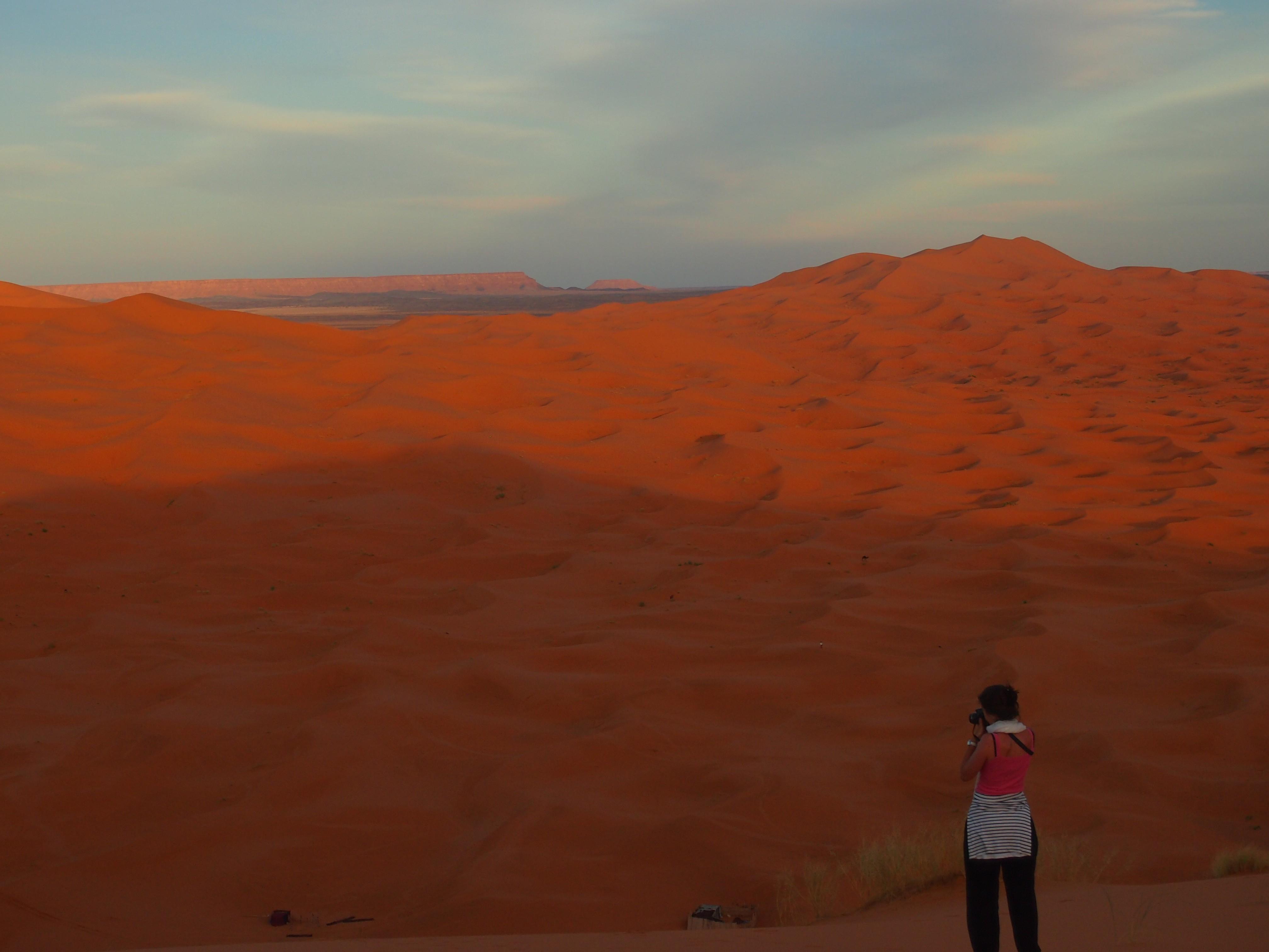 Berta Torres. Desert. L'Escola del Món