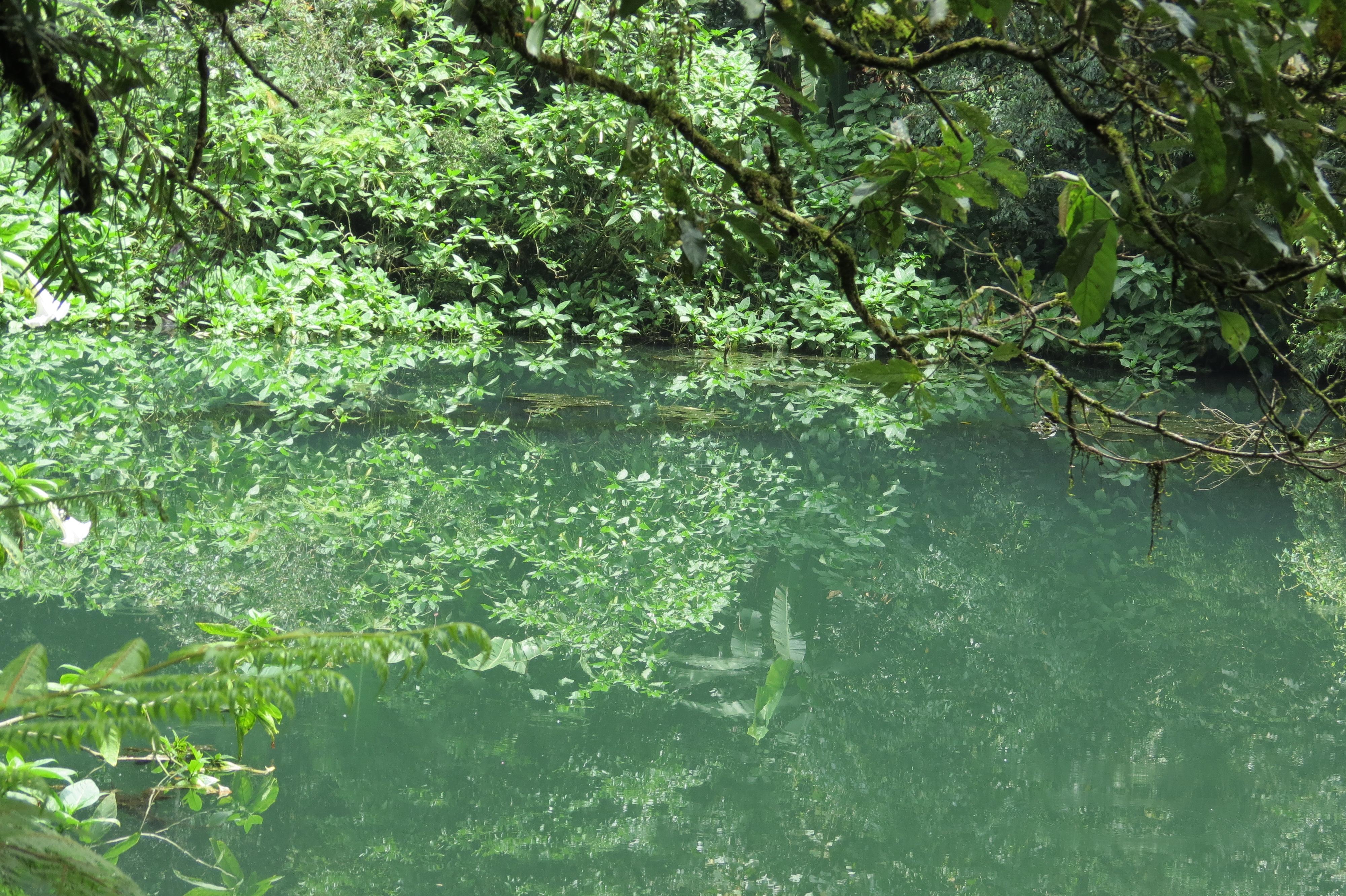 natura Bogor Cibodas