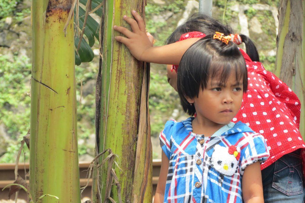 nens sacrifici Berta Java